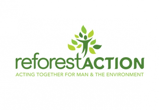 Photo actualité Participons à la reforestation